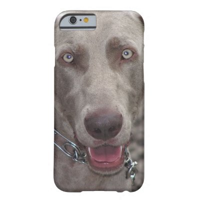 Weimaraner Barely There iPhone 6 Case