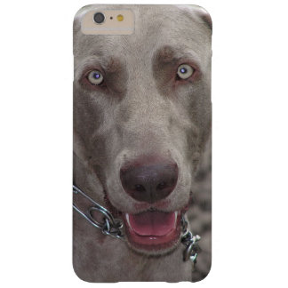 Weimaraner Barely There iPhone 6 Plus Case