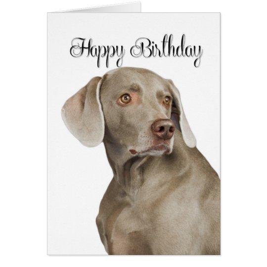 Weimaraner Birthday Card – Weimaraner Birthday Cards