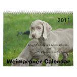 Weimaraner Calendar