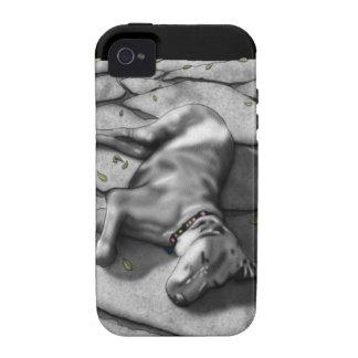 Weimaraner Vibe iPhone 4 Covers