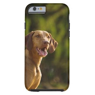 Weimaraner Tough iPhone 6 Case