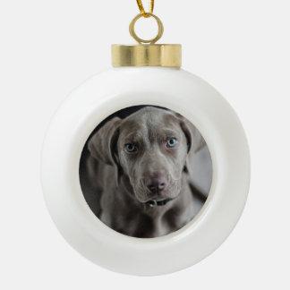 weimaraner ceramic ball christmas ornament