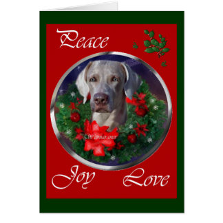 Weimaraner Christmas Gifts Card