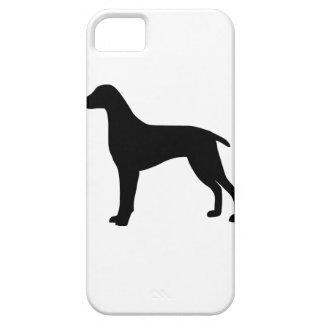 Weimaraner Dog iPhone SE/5/5s Case