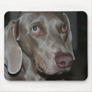Weimaraner Dog Mouse Pad