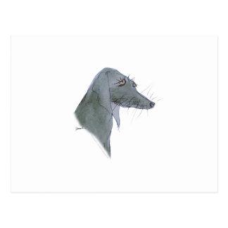 Weimaraner dog, tony fernandes postcard