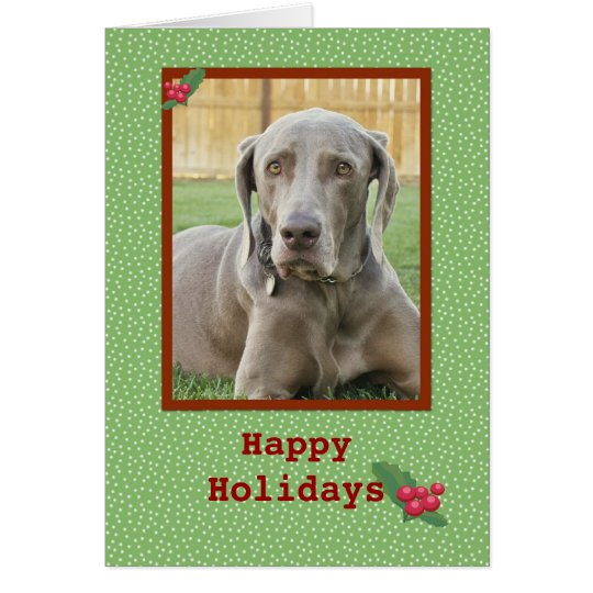 Weimaraner Happy Holidays Card