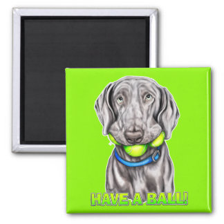Weimaraner Have a Ball 2 Inch Square Magnet
