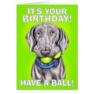 Weimaraner Have a Ball Greeting Card