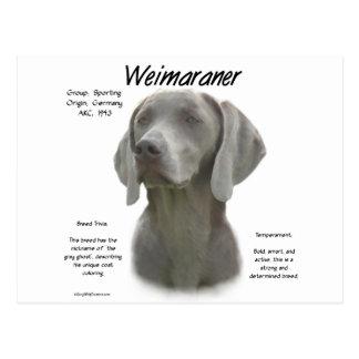 Weimaraner History Design Postcard