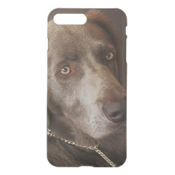 Uncommon iPhone 7 Plus Clearly™ Deflector Case with Weimaraner Phone Cases design