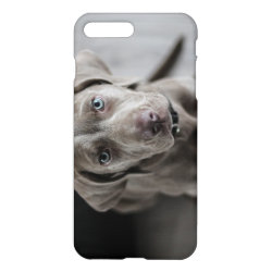 iPhone 7 Plus Case with Weimaraner Phone Cases design