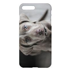 iPhone 7 Plus Case with Weimaraner Phone Cases design