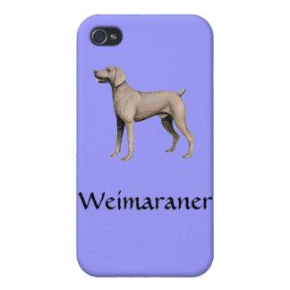 Weimaraner iPhone 4 Case