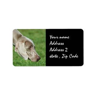 Weimaraner Label