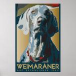 Weimaraner Nation : AKC Weimaraner Poster