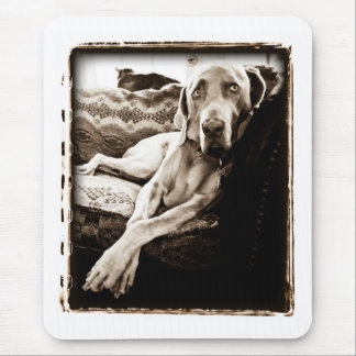 """Weimaraner Nation : """"Ballou's Chair"""" Mouse Pad"""