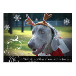"""Weimaraner Nation :""""Not a creature was stirring... Personalized Announcement"""