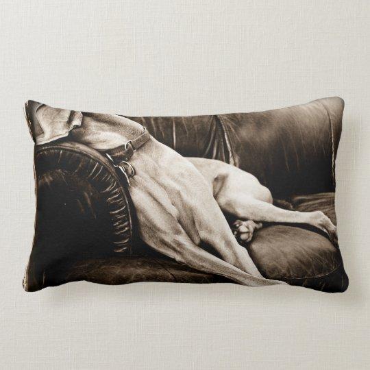 Fabulous Weimaraner Nation C Taking Over The Couch Lumbar Pillow Short Links Chair Design For Home Short Linksinfo