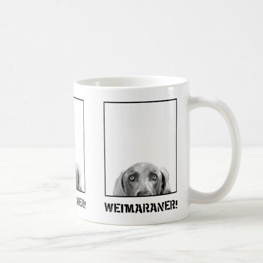 Weimaraner Nation : Weimaraner In A Box Mug