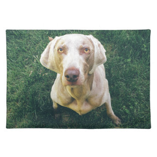 Weimaraner of the Grass Placemat