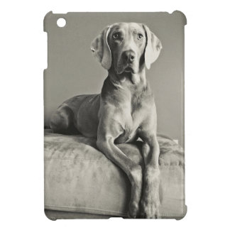 Weimaraner Portrait iPad Mini Covers
