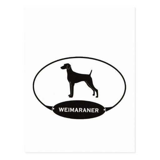 Weimaraner Postcards