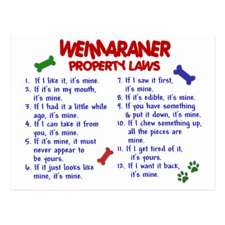 WEIMARANER Property Laws 2 Post Cards