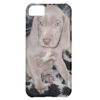 Weimaraner Puppy Case For iPhone 5C