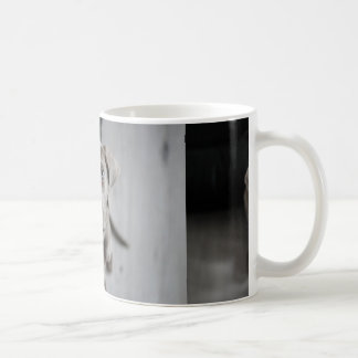 weimaraner-puppy coffee mug