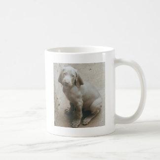 weimaraner puppy cute coffee mug