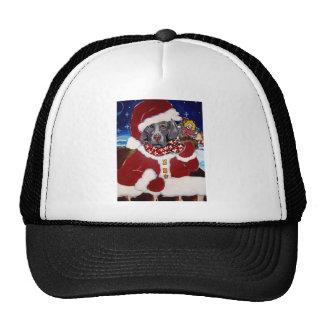 Weimaraner Santa Trucker Hats