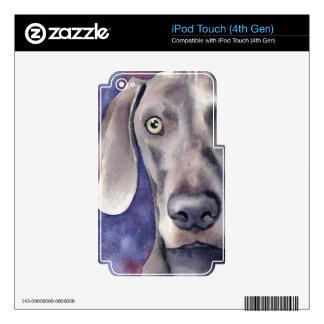 Weimaraner Skins Para iPod Touch 4G