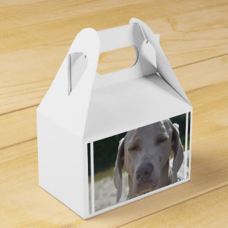 Weimaraner soñoliento cajas para detalles de boda