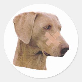 Weimaraner With Band-Aid Classic Round Sticker