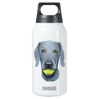 Weimaraner with Tennis Ball Insulated Water Bottle