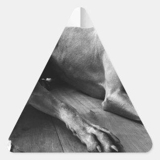 Weimaraners Calcomania De Triangulo Personalizadas