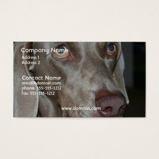 Weimeraner Dog Business Card