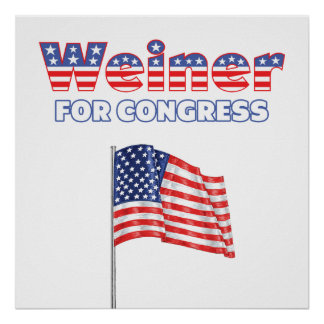 Weiner for Congress Patriotic American Flag Print