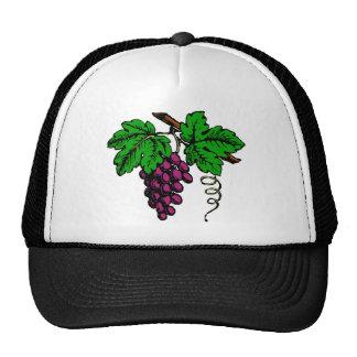 weintrauben rebe grapes vine gorro