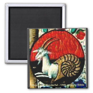 Weird and Wonderful 2 Inch Square Magnet