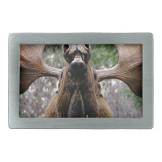 weird bull moose rectangular belt buckle