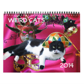 WEIRD CATS 2014 WALL CALENDAR