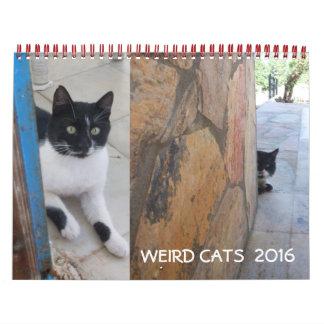 WEIRD CATS 2016 CALENDAR