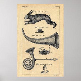 Weird Victorian Etching - Hare & Ear Truimpets Poster