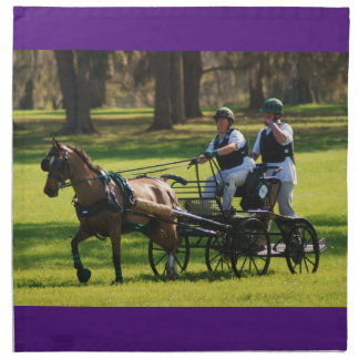 Weirsdale, Fl carriage driving horse show Napkin