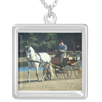 weirsdale fl carriage necklaces