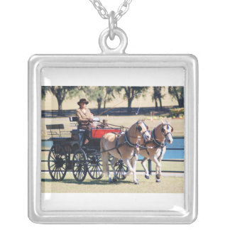 weirsdale fl carriage s how necklace
