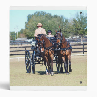 weirsdale fl carriage show 3 ring binder